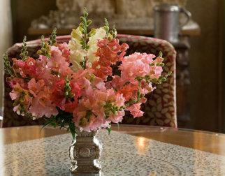 Blomster fra Aulestads hage